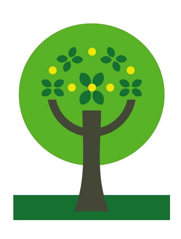 arbre-ecologie
